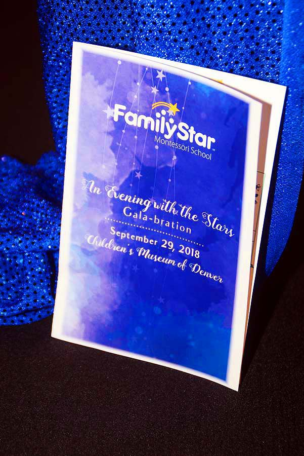 family star gala 2018 (150)