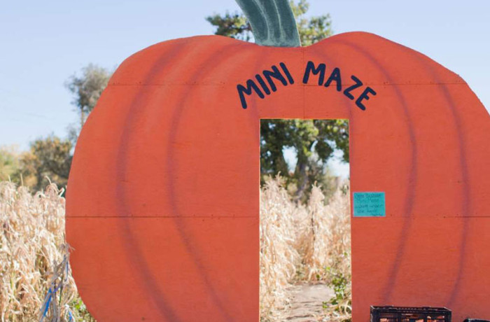 Maze_MiniMaze-700x460